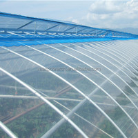 Comercial Agricultural Low Cost Greenhouse