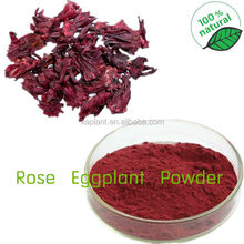 Freeze Dried Roselle Powder/Roselle Juice Concentrate Powder/Dried Roselle Flower Extract Powder