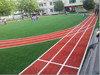 Natural artificial/grass turf for school running track project