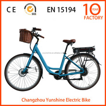 Poodle ,mid drive chinese motors for city electric bike
