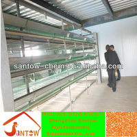 2013 new design best quality automatic chinese bird cage