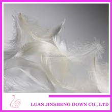 High Quality Low Price nature washed white duck down from luan