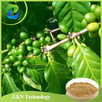 Green coffee bean extract / Chlorogenic acid / Total Chlorogenic acids for loss weight
