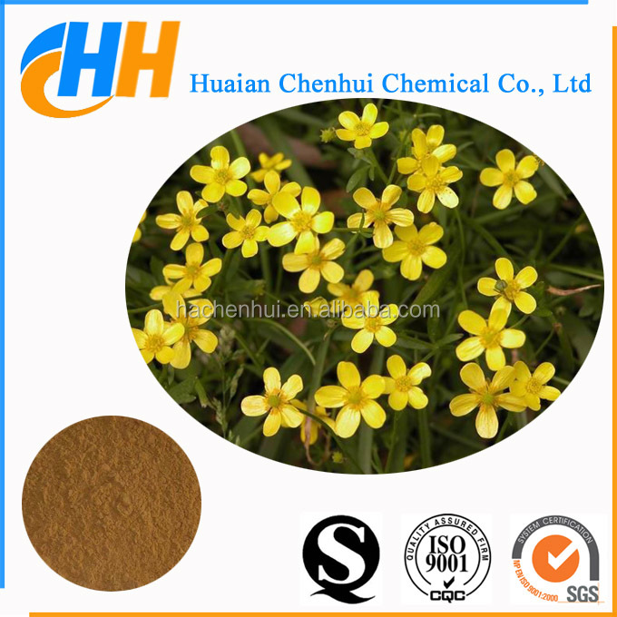 Herbal extract Cat's Claw Extract, Ranunculus Ternatus Thunb Extract, Alkaloid 3% 5%