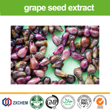 Pure Natural herb extract of organic Grape Seed