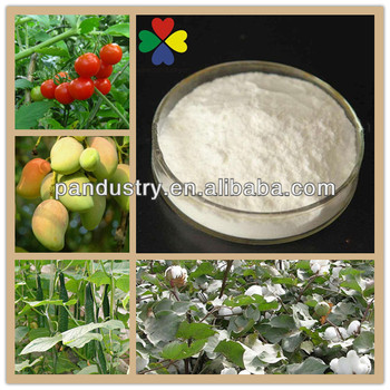 Good Quality 99%TC Growth Hormone Auxin IAA