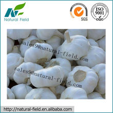 100% pure garlic extract used in feed additive
