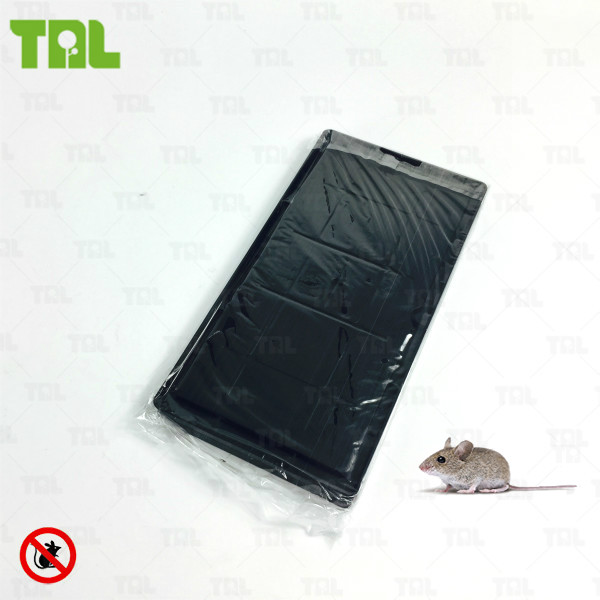 Industrial Mouse Trap Non Electronic Mouse And Insect Glue Trap (TLGT0207)