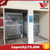 75600 eggs multi-stage egg incubators equipment