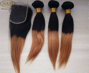2016 China Supplier Ombre Human Braiding Hair Bulk Wholesale Price New Fashion Double Drawn 1b 27 Ombre Color Hair