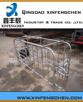 Automatic pig farming equipment for sale