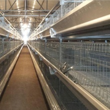 Poultry battery farm cage system for nigerian farm