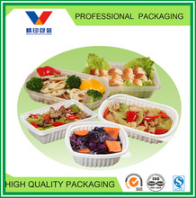 plastic disposable frozen food tray/plastic food compartment tray