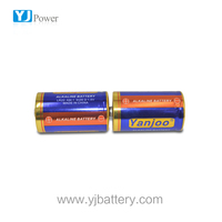 1.5v am1 lr20 size D alkaline battery