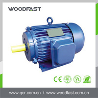 Manufacturer hot sell 60hz high torque low rpm 120v electric motor