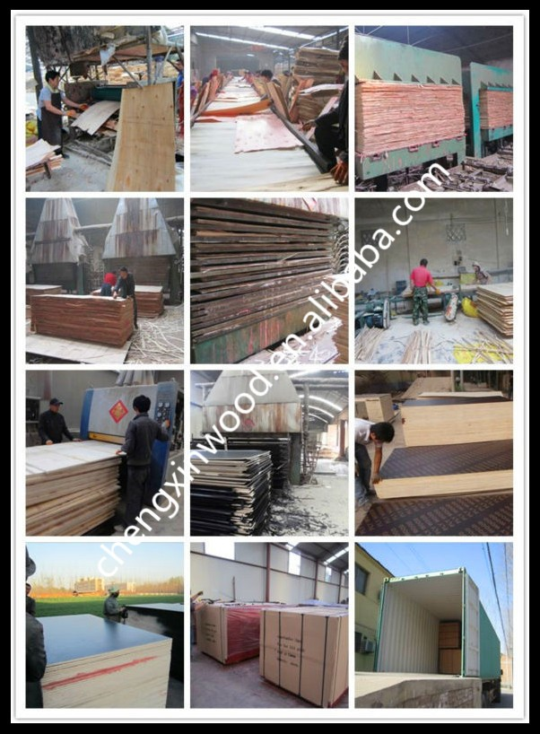 concrete formwork film faced plywood with cheap price for sale