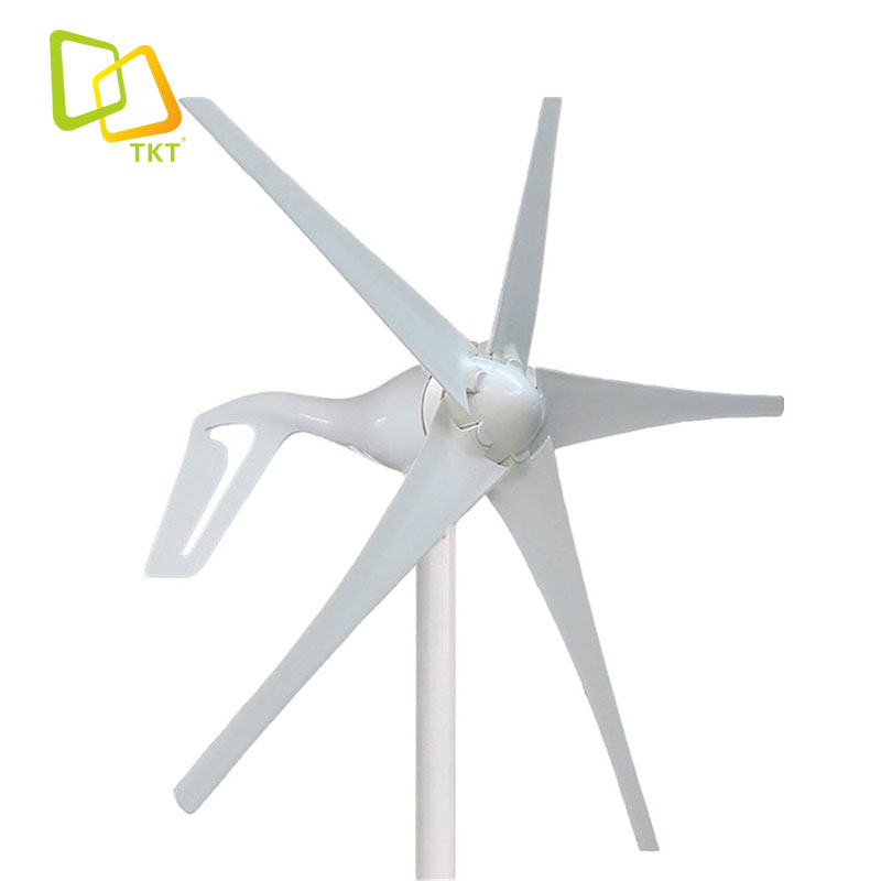 TAKTE 12V <strong>24V</strong> 100W 200W 300W 400W Horizontal Axis <strong>Wind</strong> <strong>Turbine</strong> with Good Price