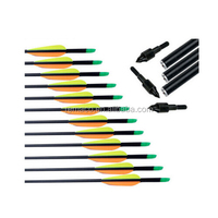 "High Quality Cheap Price Archery 30"" Fiberglass Arrow with Replaceable Arrowhead AR3001"