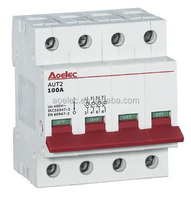AUT2 well for international market 125A Isolator Switch