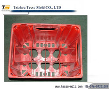 Professional plastic bee case /beer bottle mould supplier in China