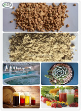 Agriculture Growing Media Granules & Powder Diatomite Earth for Pest Control , Pool Filter & Filter Aids