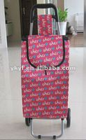 Easy folding and carry Shopping Trolley Bag