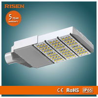 Risen New 2014 Garden 100W Led Roadway And Area Luminaire