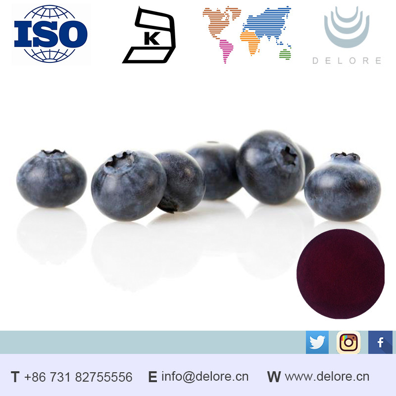 Best selling products Finland source Bilberry Extract 25% Anthocyanidins 36%Anthocyanins/blueberri powder bulk