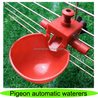 Hot sale pigeon waterer, automatic pigeon feeder, pigeon automatic waterers