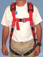 Dennington Safety Harness