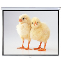 India inexpensive roll up wall projection screen