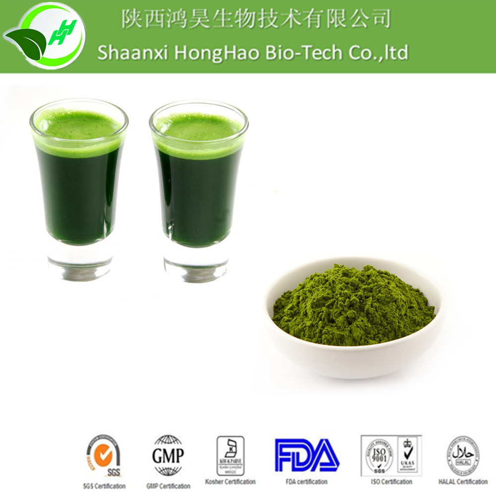 100% Pure barley grass powder/barley grass juice powder/organic barley grass powder