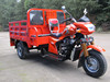 gasoline three wheel bicycle for adults/3 wheel motorcycle