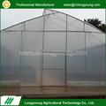 Customized design water collection plastic film sawtooth used green house