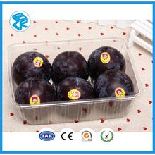 Disposable Small Fruit Box Cheap Plastic Pet Packing Manufacturer Blueberry Container