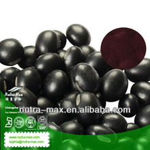 100% Natural Black Soybean P.E ( Black Bean source )