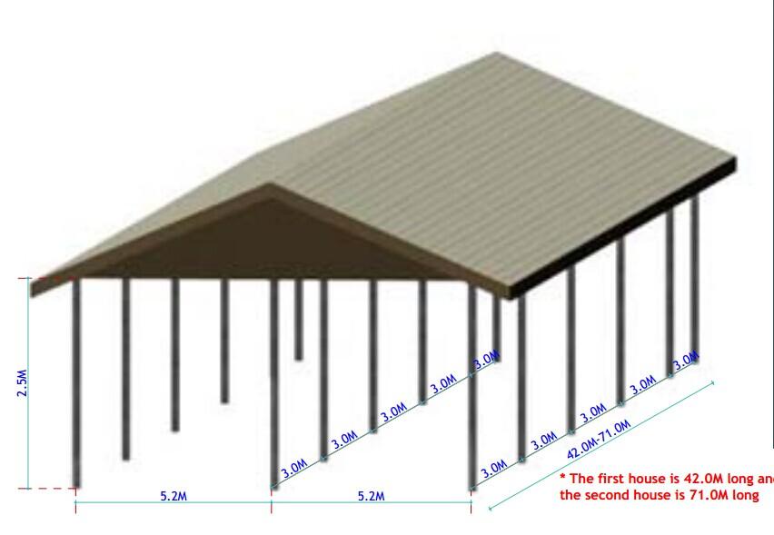 Design modern chicken farm for layer hen egg buy design for Model chicken set