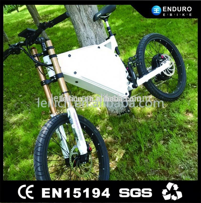 19inch 3000w/5000w brushless rear motor wheel electric bike /bicycle with special frame