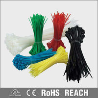 UL,ROHS High Tensile Strength Pa66 Cable Ties Nylon