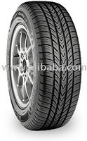 Michelin Pilot Exalto A / S Tires