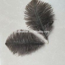 wholesale natural10-15cm ostrich feather