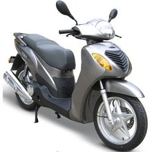 200cc 16inch Wheel Gas Scooter (Xy200t-7)