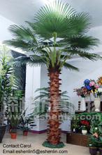 plastic decoration palm trees,coconut trees,artificial big trees wholesale
