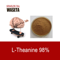 L-Theanine//N5-ethyl-L-Glutamine//Green Tea Extract