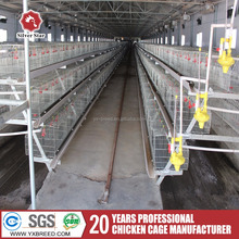 egg production layer chicken cage sale to ghana farm