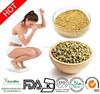 100% Pure Green Coffee Bean Extract / Best price Green Coffee Bean Extract