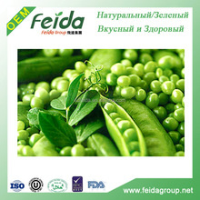 Salted Fried Green Peas/2016 green pea/good price