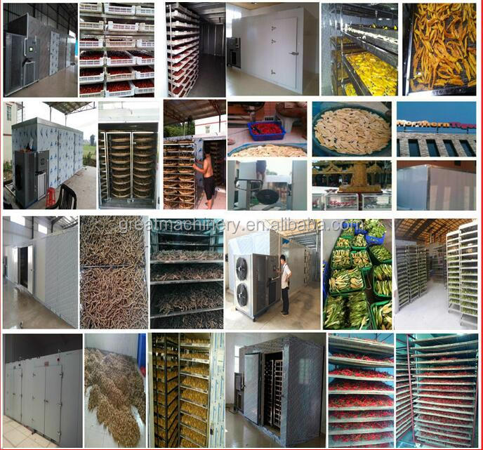 Engery saving Vegetable&Fruit Drying Machine/Dryer/Drying Cabinet/Oven with Direct Manufacturer