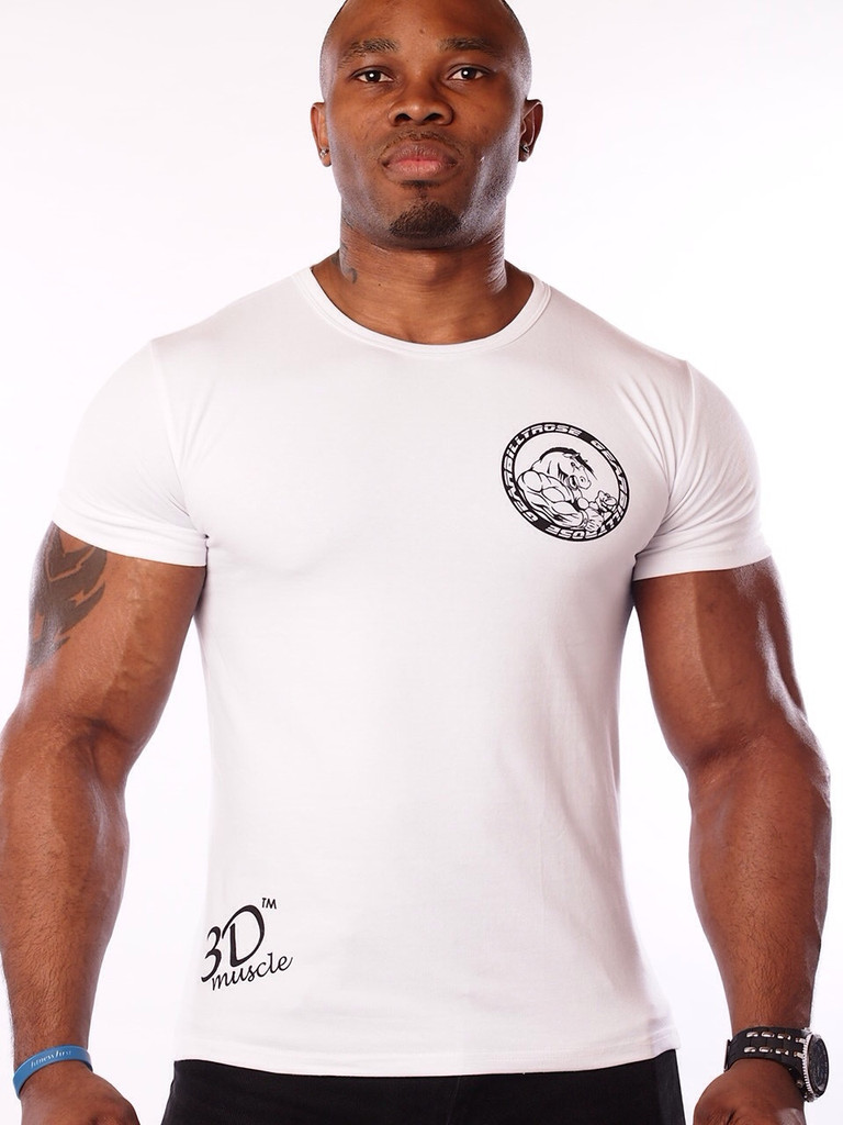 Custom high quality fitness bodybuilding t shirts for men Fitness shirts for men