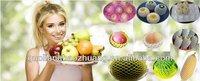 Plastic Protective and Cushioning Fruit Net